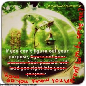 28.Purpose