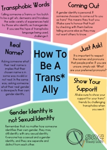 How-to-be-a-Trans-Ally-copy
