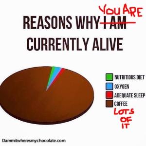 147.ReasonsWhyYouAreCurrentlyAlive
