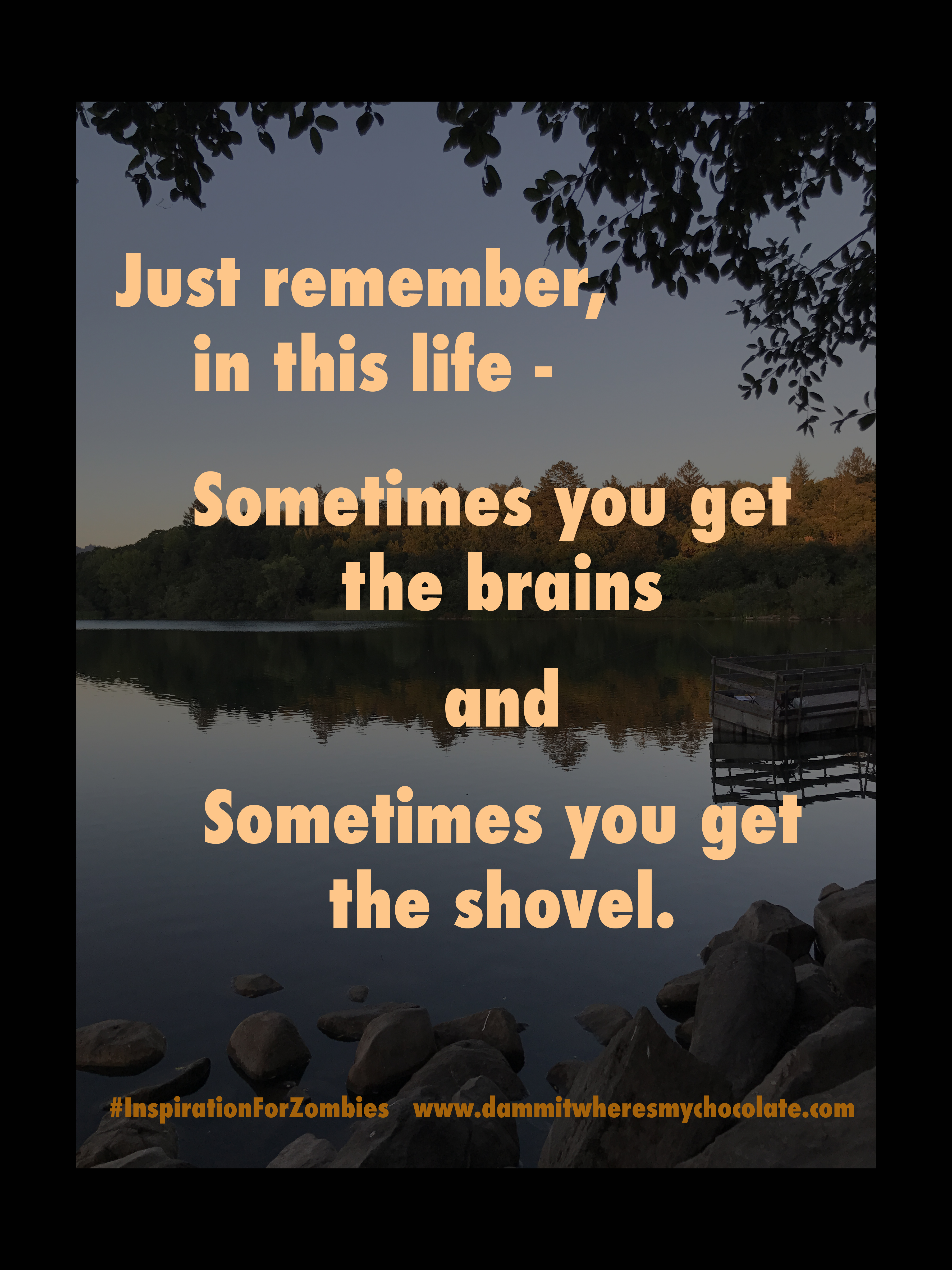 SometimesBrainsSometimesShovel